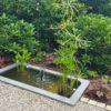 Miniteich im Garten Wasser im Garten mit Wassersprudler und Teichpflanzen