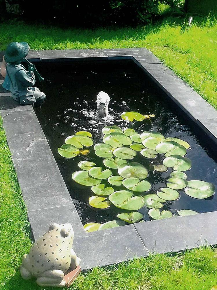 Teichbecken Garten, Wasserbecken, Seerosen, Fontäne, Wasserspiel